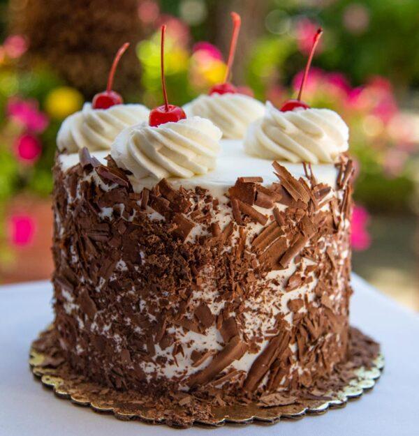 Black Forest Mini Cake